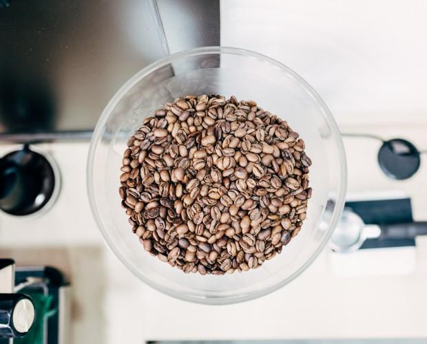 Granos de café tostado en tolva de molino Mahlkönig K30